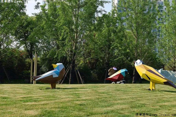 草坪在园林景观设计中的应用