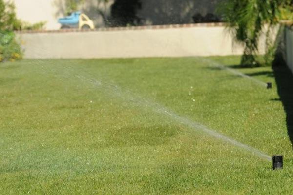 草坪浇水指南大全